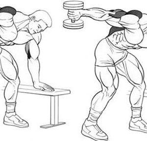 Гипертрофия питания Верхний нижний PHUL Руководство по тренировкам